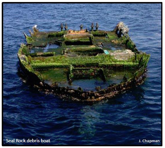 Tsunami debris covered in green algae