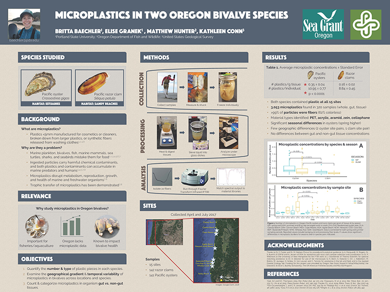 Student research poster by Britta Baechler on microplastics