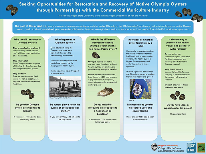 "research poster titled ""Seeking Opportunities for Restoration and Recovery of Native Olympia Oysters through Partnership with the Commercial Mariculture Industry"""