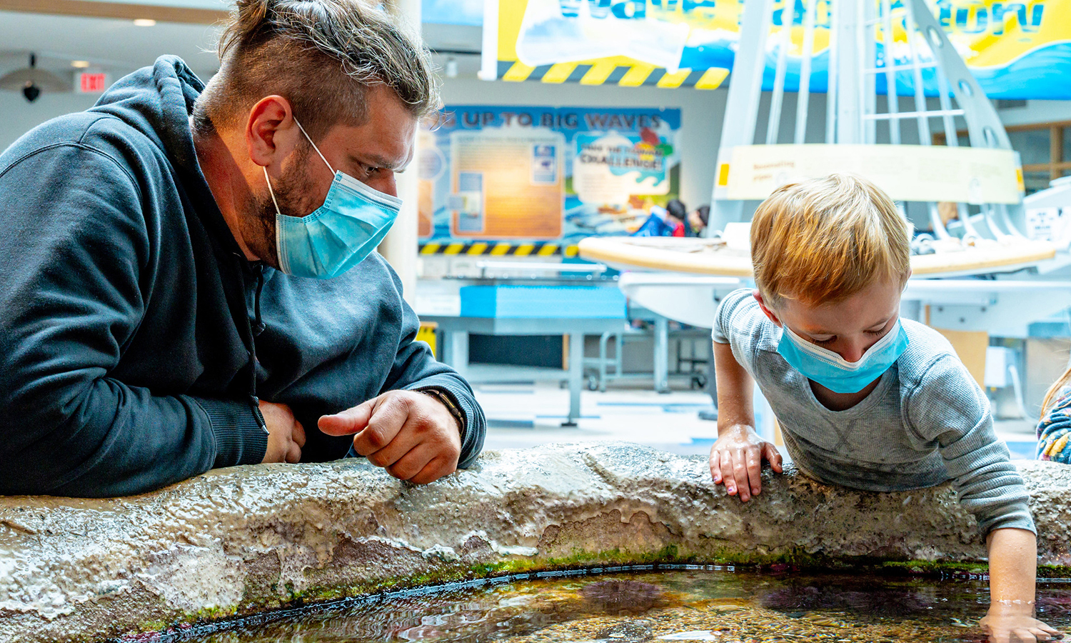 A man and his young son put their hands in the touch tidepool tank at the Oregon Sea Grant's Visitor Center.