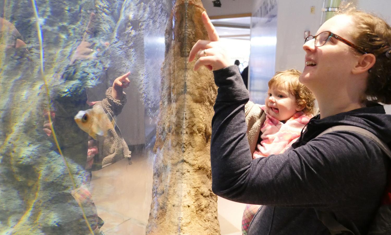 Mother and child look at the aquarium exhibit
