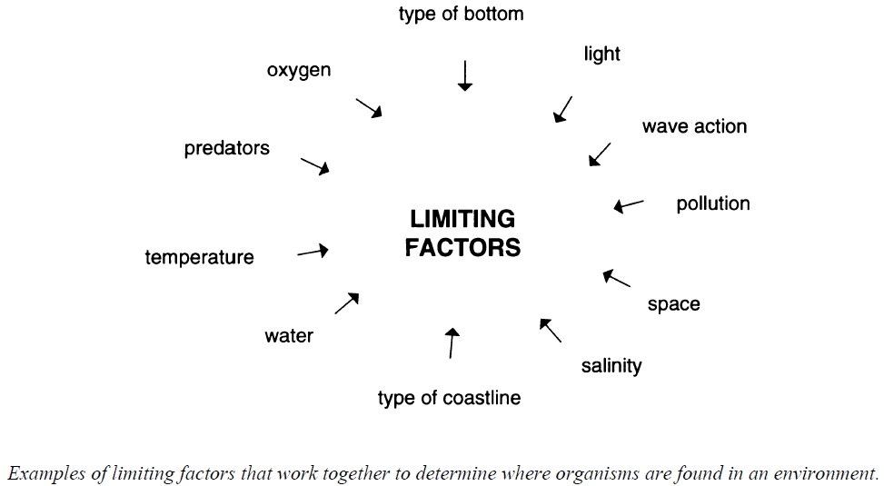 Circular diagram showing examples of limiting factors that work together to determine where organisms are found in an environment, such as type of bottom, light, wave action, pollution, space, salinity, etc.
