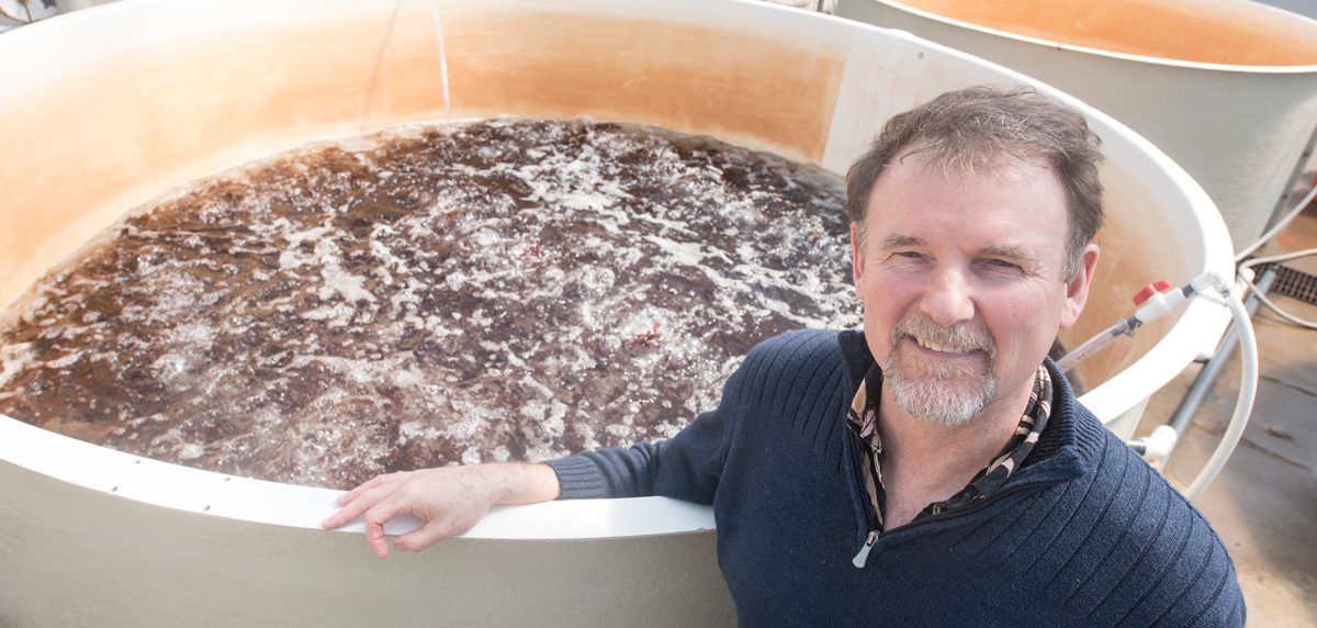 Chris Langdon, an aquaculture researcher at Oregon State University