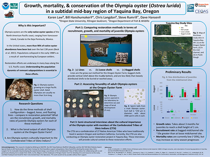 """Research poster titled, """"Growth, mortality and conservation of the Olympia oyster in a subtitle mid-bay region of Yaquina Bay, Oregon"""""""
