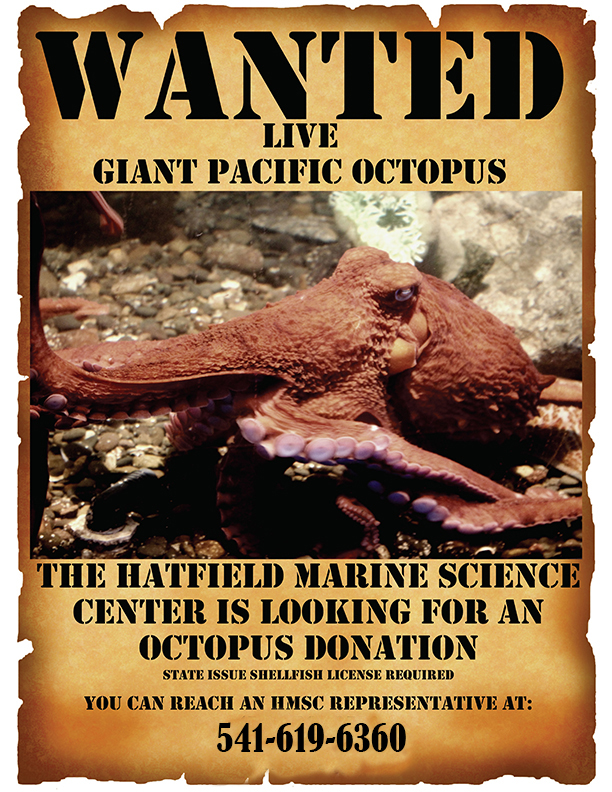 Image of flyer asking for live octopus donations.