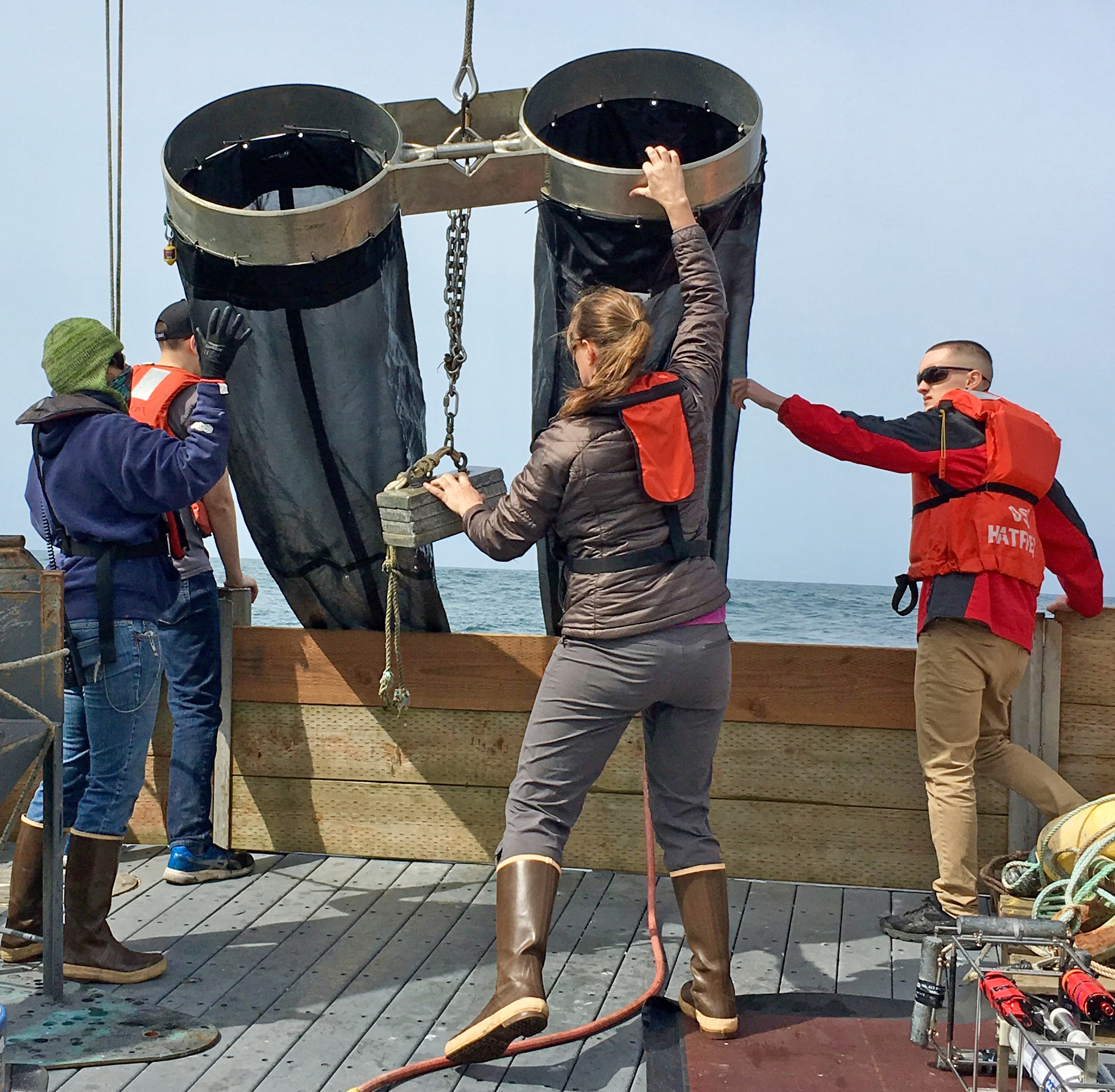 researcher deploys net to collect plankton