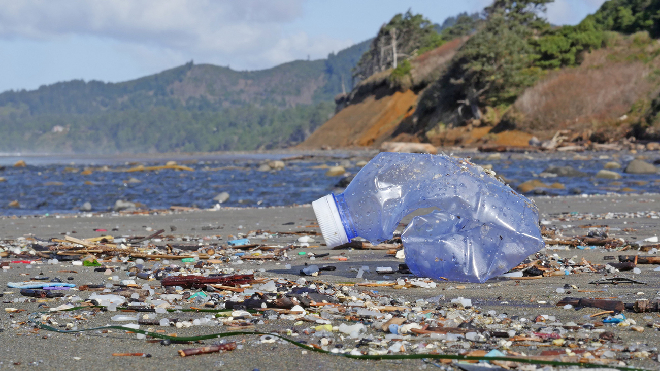 A close up view of a crumpled plastic bottle on the beach is the foreground. It is surrounded by tiny pieces of plastic. In the background is the coastal headlands near Beverly Beach in Oregon.