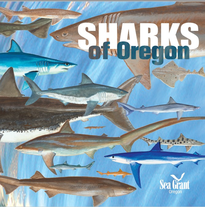 Cover of the Sharks of Oregon brochure.
