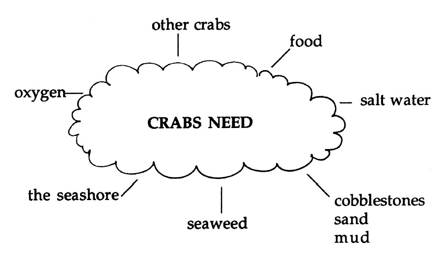 Image cloud graphic listing what students think crabs need to survive