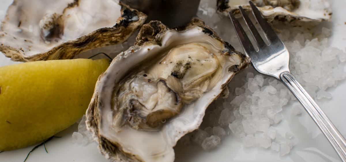 raw oyster on the half shell with lemon and fork