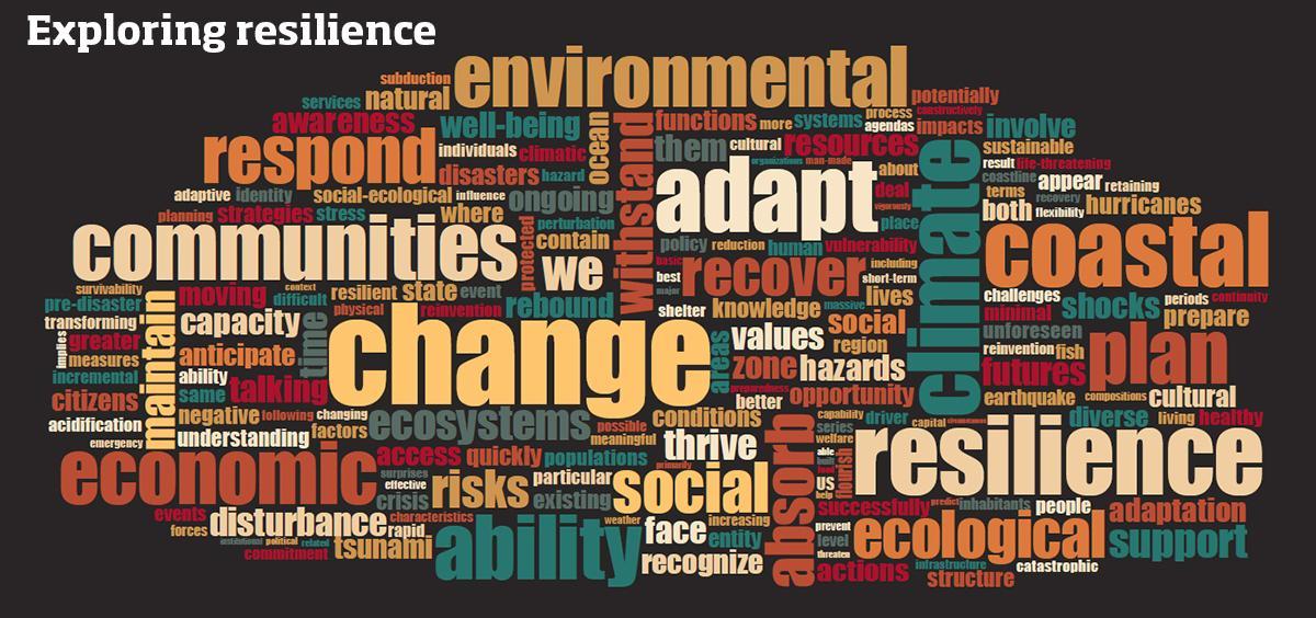 Exploring coastal resilience