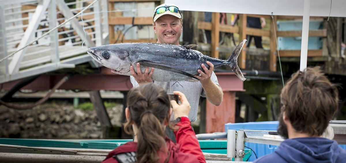 Joe Phillips, of fishing vessel Triggerfish, shows off an albacore tuna during a Shop at the Dock tour in Newport in 2016.