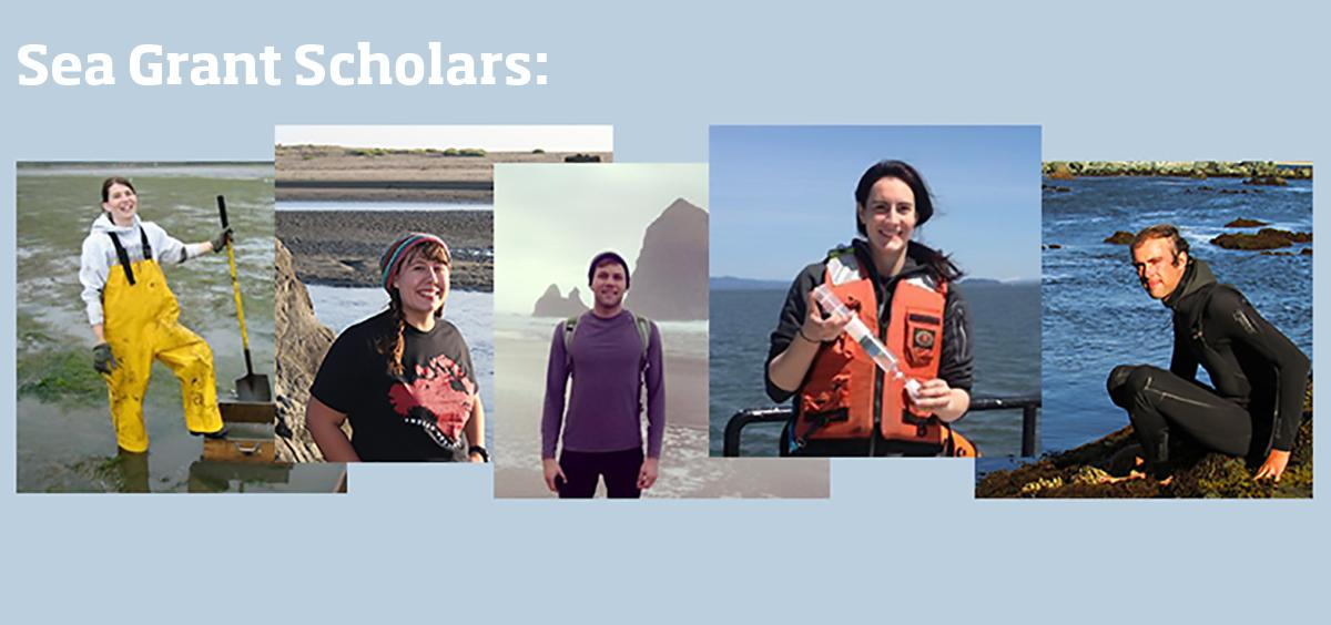 Sea Grant Scholars: Blogging as they learn