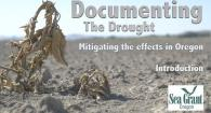 Documenting the Drought: Mitigating the Effects in Oregon (Introduction)