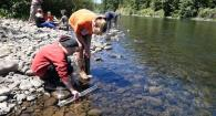 How to use StreamWebs' LaMotte water quality kit