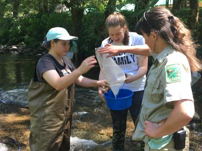 High school students exploring the critters found in a local river with Oregon Department of Fish and Wildlife