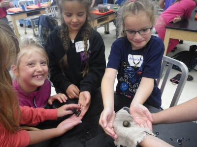 Students explore sea snail during lab class at Hatfield