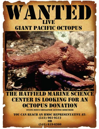 Image of flyer asking for live octopus donations