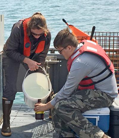 researcher collects plankton