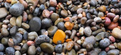 Wet, colorful rocks on the rocky shores of Oregon.