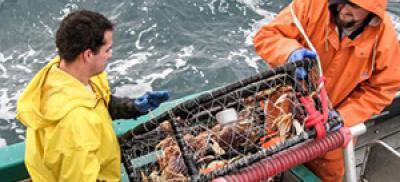 Commercial crab fishermen