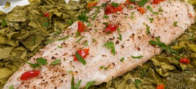 Baked lingcod fillet on a bed of sorrel and red pepper, parsley, and black pepper