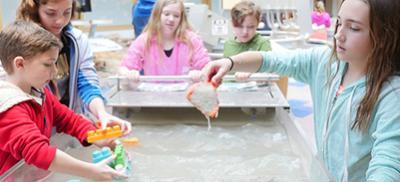 Children at the erosion exhibit at Hatfield Visitor Center