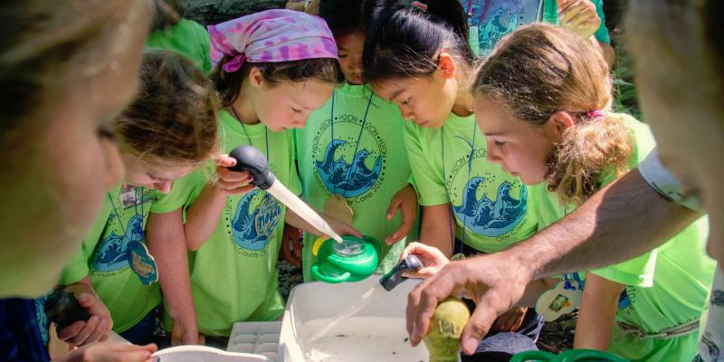 Girls look at aquatic insects