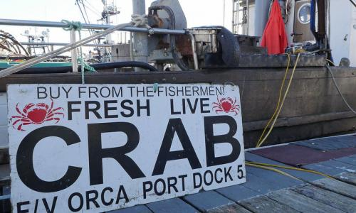 Sign on a dock advertising fresh live crab for sale.