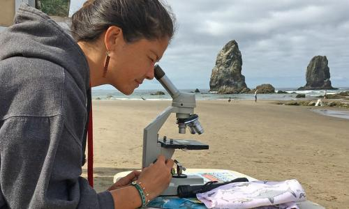 Honor Booth, a Summer Scholar, looks at a sample under a microscope on the beach. In the background are sea stacks.