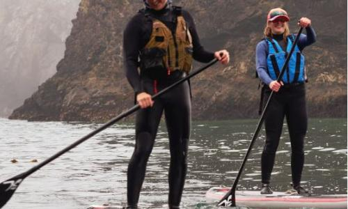 Two paddle boarders