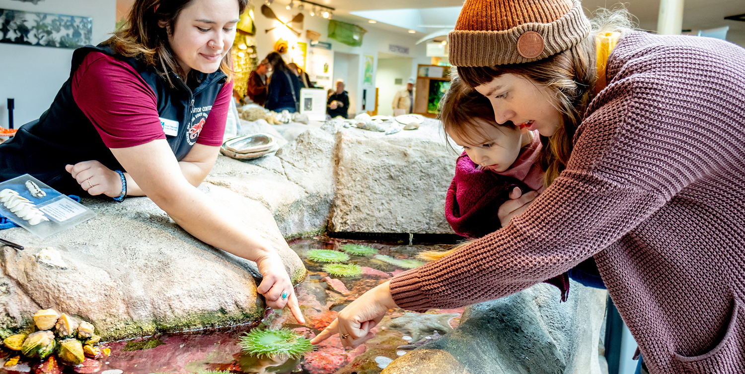 A docent talks to a mother and young daughter at the Visitor Center. She is pointing to green anenomes and the young girl is reaching out to touch them too.